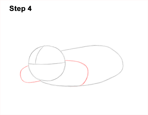 How to Draw a Common European Mole Side 4