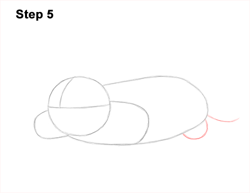 How to Draw a Common European Mole Side 5