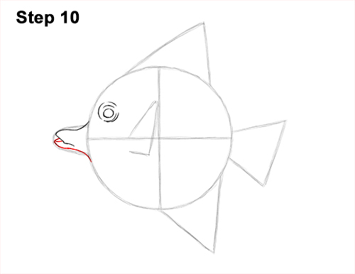 How to Draw Moorish Idol Fish 10