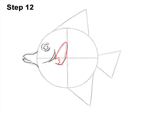 How to Draw Moorish Idol Fish 12