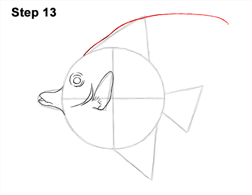 How to Draw Moorish Idol Fish 13