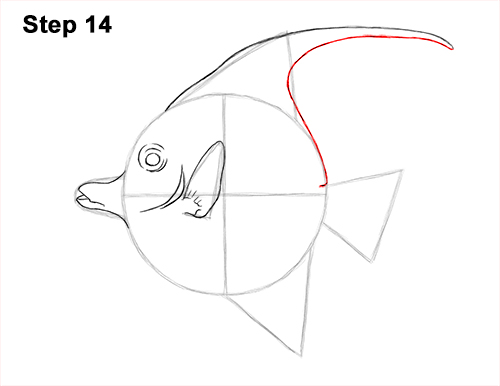 How to Draw Moorish Idol Fish 14