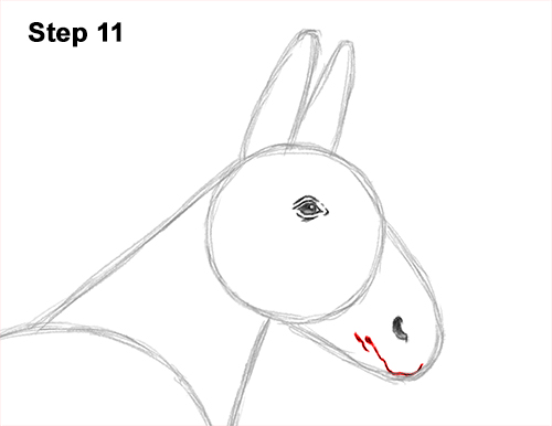 How to Draw a Mule Horse Donkey Side View 11