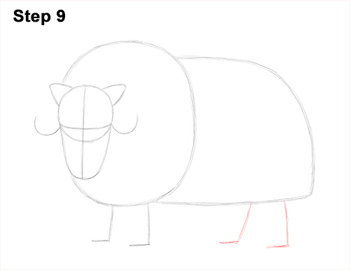 How to Draw Musk Ox Standing Horns 9