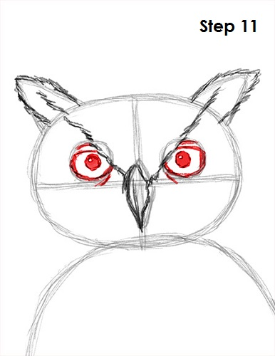 Draw Great Horned Owl 11