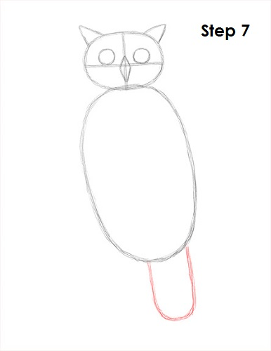 Draw Great Horned Owl 7