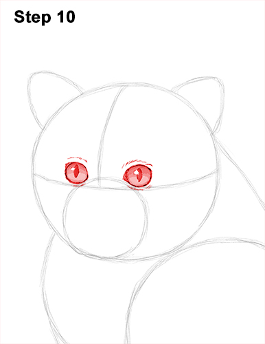 Draw Persian Kitty Cat 10