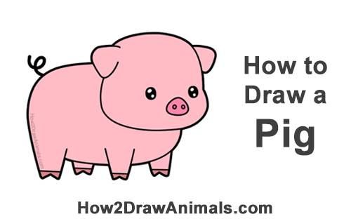 How To Draw A Pig Cartoon Video Step By Step Pictures
