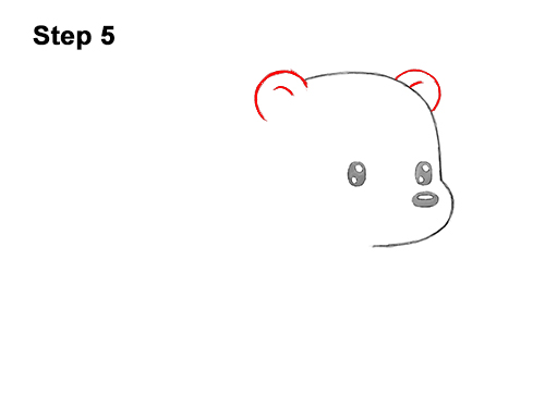 How to Draw Cute Cartoon Polar Bear 5