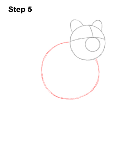 How to Draw a Smiling Quokka Short Tail Scrub Wallaby 5