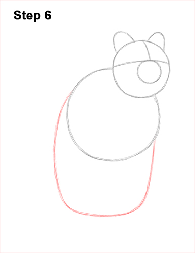 How to Draw a Smiling Quokka Short Tail Scrub Wallaby 6