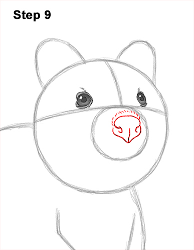 How to Draw a Smiling Quokka Short Tail Scrub Wallaby 9