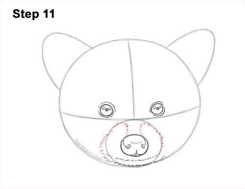 How to Draw a Raccoon Head Face Portrait 11
