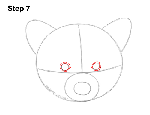 How to Draw a Raccoon Head Face Portrait 7
