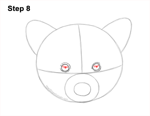 How to Draw a Raccoon Head Face Portrait 8