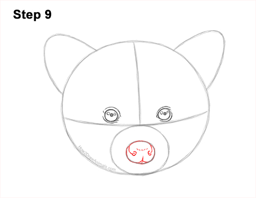 How to Draw a Raccoon Head Face Portrait 9