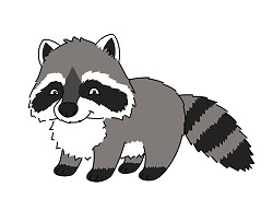 How to Draw a Cute Cartoon Raccoon