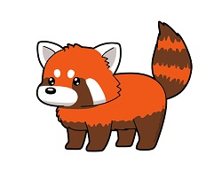 How to Draw a Cute Cartoon Red Panda Chibi Kawaii Manga