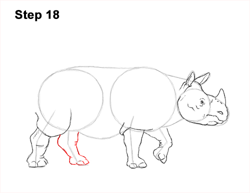 How to Draw an Indian Greater One Horned Rhinoceros 18