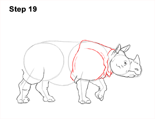 How to Draw an Indian Greater One Horned Rhinoceros 19