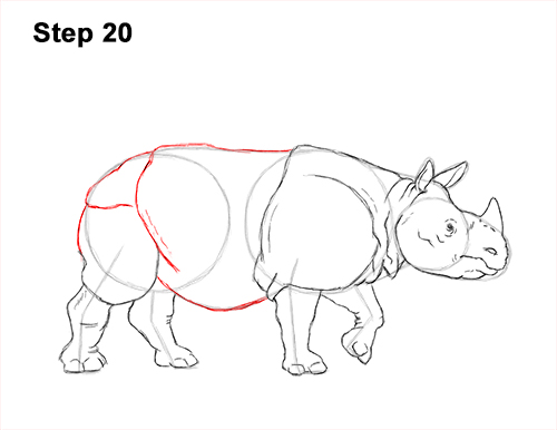 How to Draw an Indian Greater One Horned Rhinoceros 20