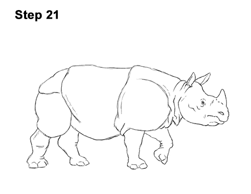 How to Draw an Indian Greater One Horned Rhinoceros 21