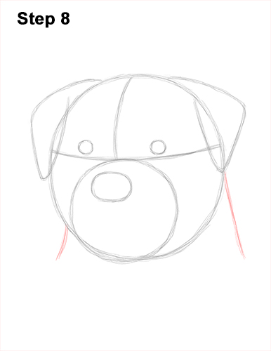 How to Draw a Rottweiler Dog Head Portrait Face 8
