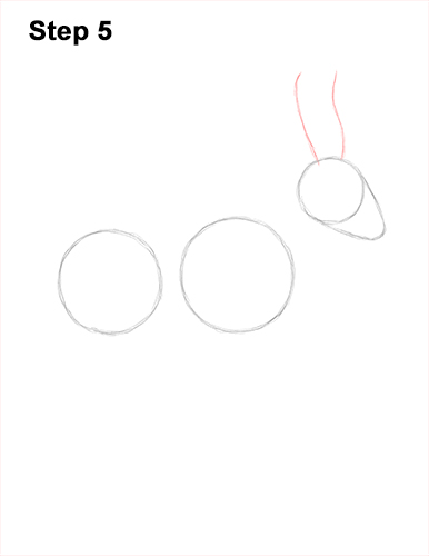 How to Draw a Male Saiga Antelope 5