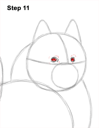 How to Draw a White Samoyed Puppy Dog 11