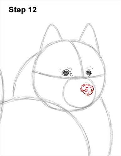 How to Draw a White Samoyed Puppy Dog 12