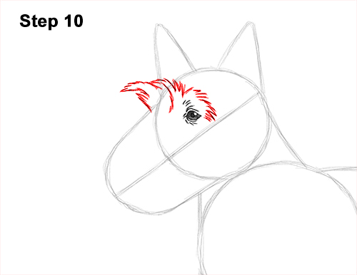 How to Draw a Scottish Terrier Puppy Dog Side 10