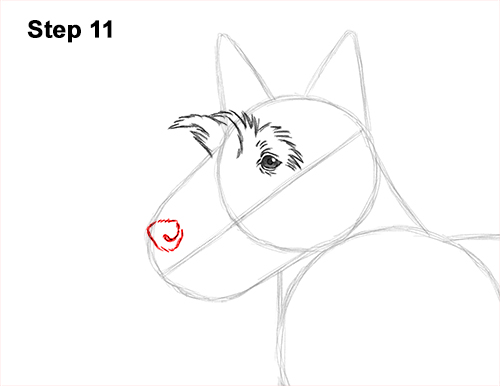 How to Draw a Scottish Terrier Puppy Dog Side 11