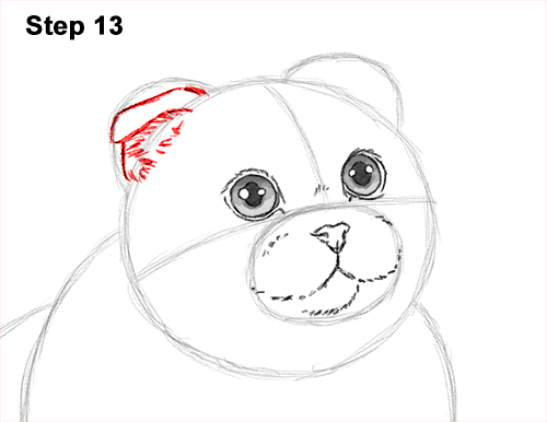 How to Draw a Scottish Fold Cat Playing Pawing Swiping 13