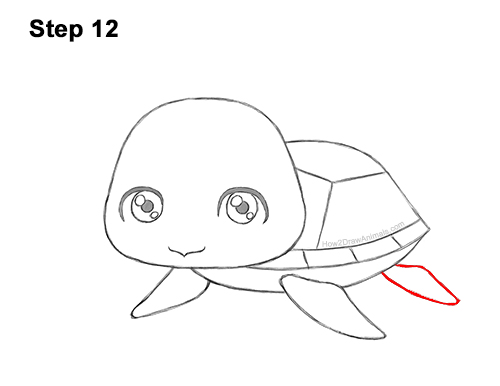 How To Draw A Sea Turtle Cartoon Video Step By Step Pictures