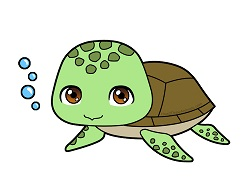 How to Draw a Cute Cartoon Chibi Kawaii Baby Sea Turtle
