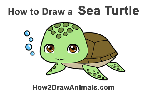 How to Draw a Cute Cartoon Sea Turtle Chibi Kawaii