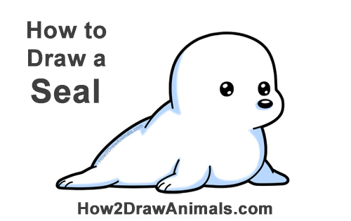 How to Draw a Cute Cartoon Harp Seal Pup Chibi Kawaii