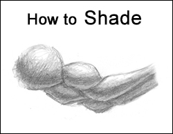 How to Shade Drawings Exercises for Practice