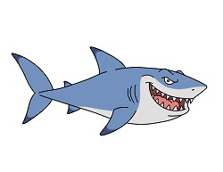 How to draw a Great White Shark cartoon