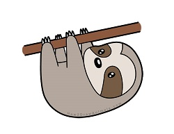 How to draw a Cute Cartoon Sloth Hanging