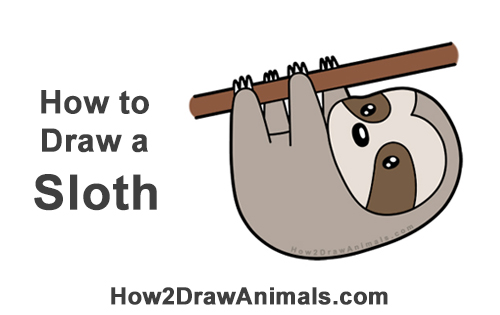 How to Draw Cute Cartoon Sloth Chibi Kawaii