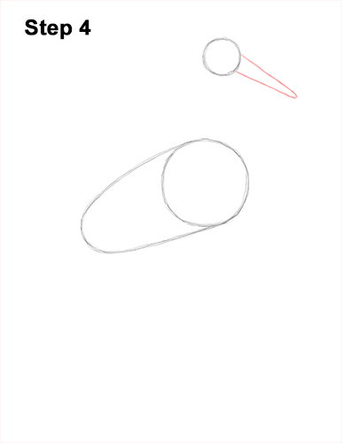 How to Draw a White Stork Bird Side View 4