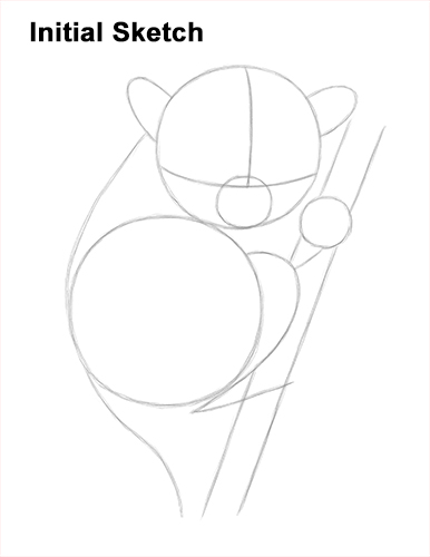 How to Draw a Philippine Tariser Guides Lines