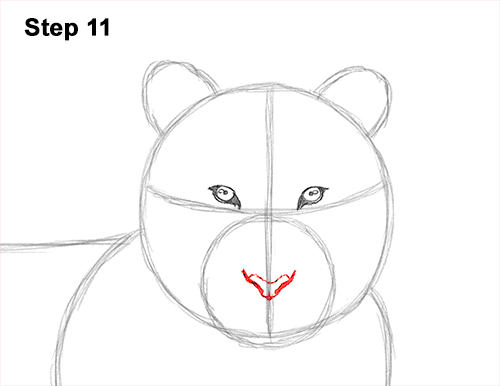 How to Draw a Tiger Laying Lying Down 11
