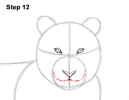 How to Draw a Tiger Laying Lying Down 12