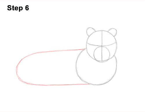 How to Draw a Tiger Laying Lying Down 6