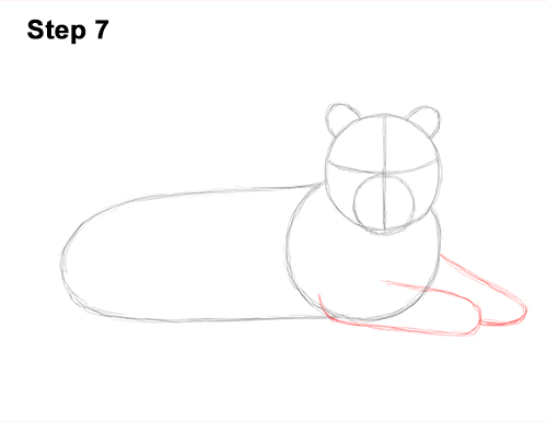 How to Draw a Tiger Laying Lying Down 7