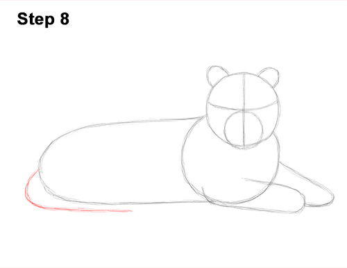 How to Draw a Tiger Laying Lying Down 8