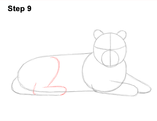 How to Draw a Tiger Laying Lying Down 9