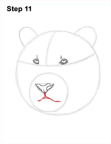 How to Draw a Tiger Head Portrait Face 11